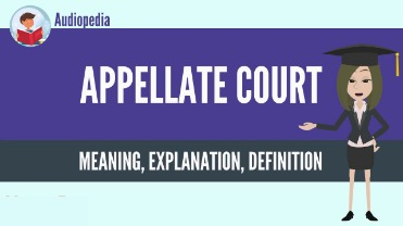trial court definition